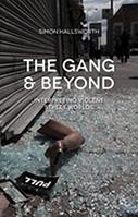 The Gang and Beyond: Interpreting Violent Street Worlds